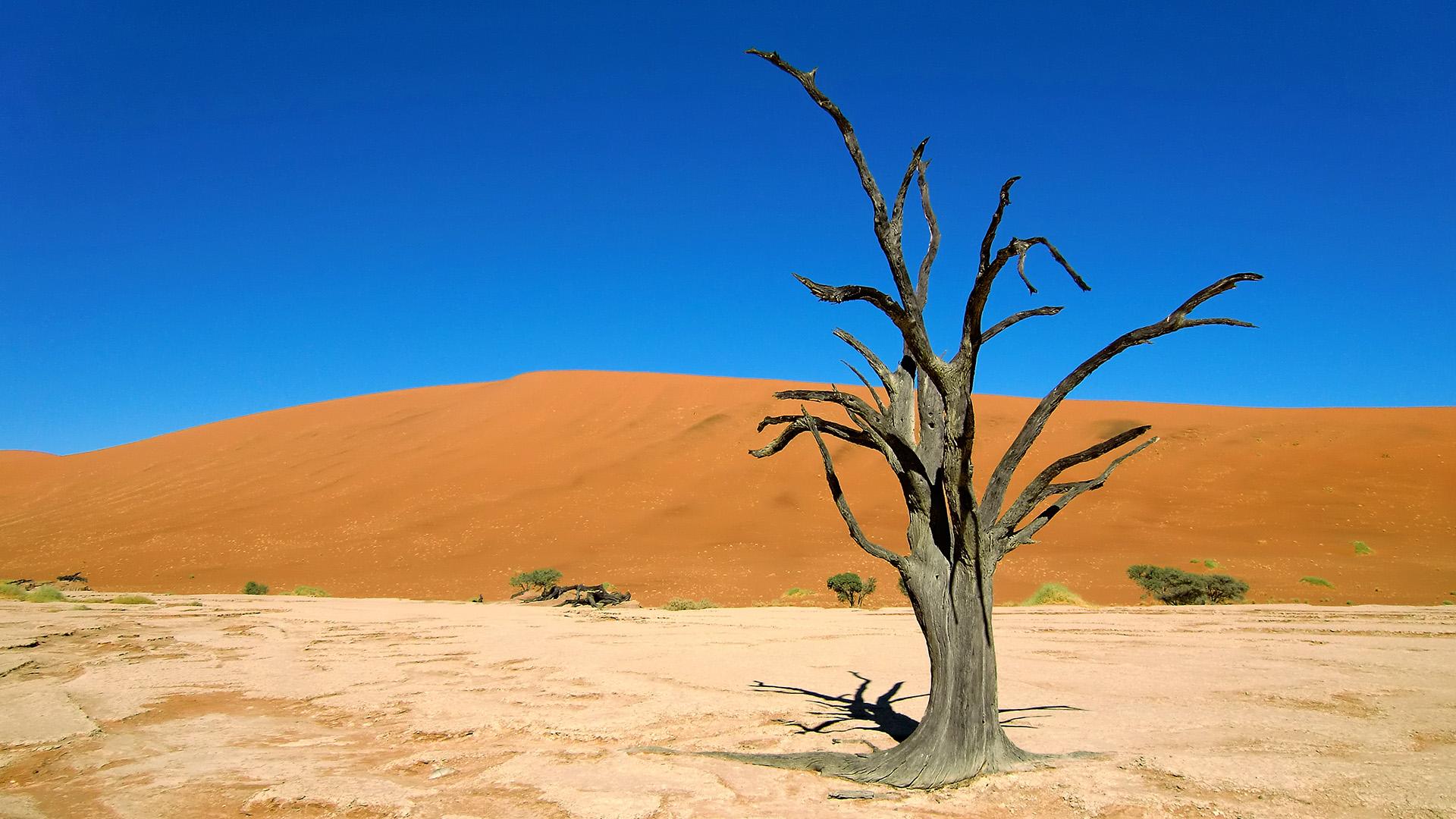 Header Namibia – endlose Horizonte